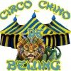 Beijing Chinese Circus in Panama at Albrook Mall