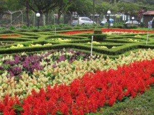 Flowers Bloom at the Boquete Fair 2013