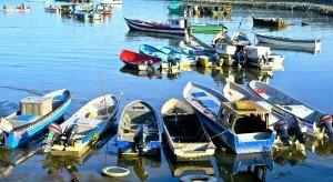 Panama Fishing Boats