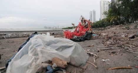 Plastic Bags Littering Panama Shoreline
